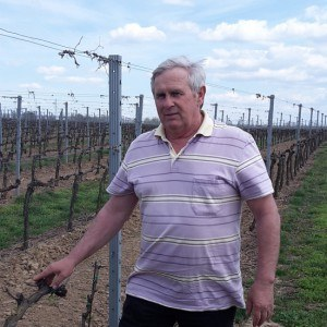 vinárstvo tajna