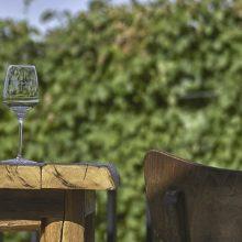 Biodynamické a ekologické vinárstvo