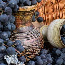 Ak milujete víno, vzdajte hold aj kvasinkám