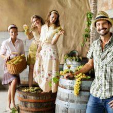 Odkedy a prečo ľudia oslavujú oberačku a kam na vinobranie?