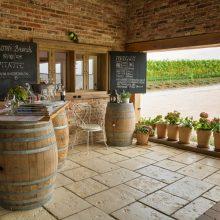 Víno Tajna – vybudovať vinárstvo je neopakovateľný zážitok