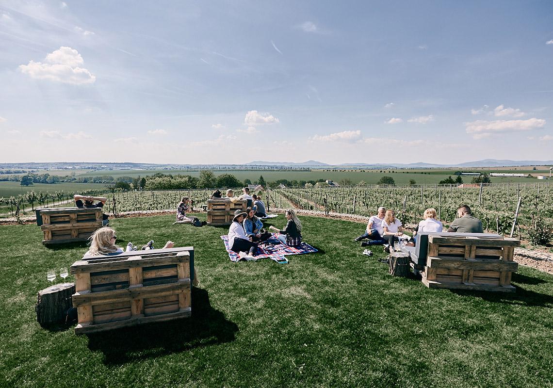 Ochutnávka vín Tajna – prežite atmosféru, pri ktorej sa rodí víno