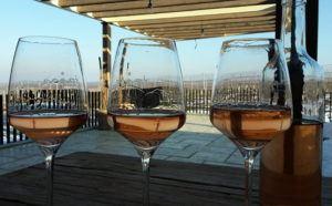 Tajna ruzove vino 1_1