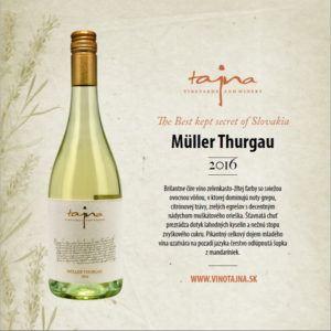 Müller Thurgau mladé víno