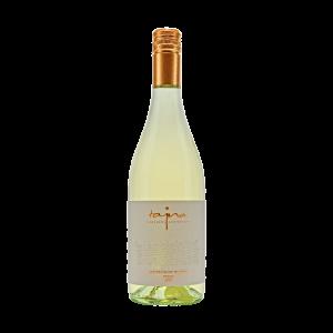 Sauvignon Blanc FRESH 2018 Tajna