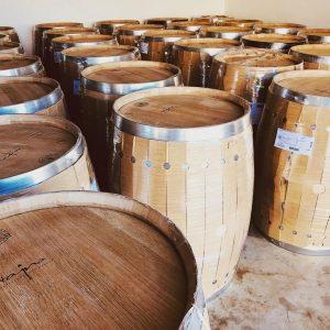 vinár vinárstvo Tajna