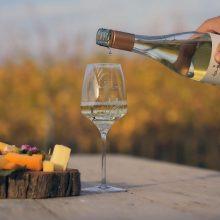 Súboj farieb- biele víno, či červené?