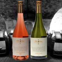 Cabernet Sauvignon rosé 2015 a Rizling vlašský 2015 sú zaradené do Národného salónu vín 2016