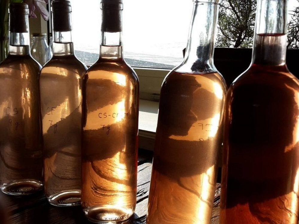 My a naši ľudia – vinárstvo Tajna