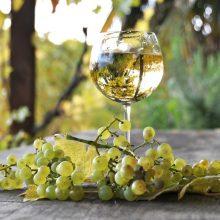 Cuvée alebo kupáž – víno, ktoré je vizitkou vinára