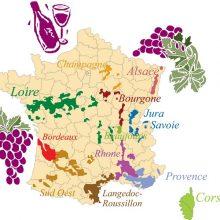 Beaujolais – symbol mladého vína aj kvalitného červeného