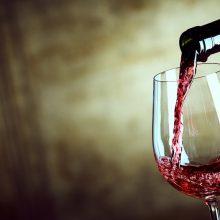 Slovné hračky s odrodami viniča