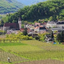 Cestujeme za svetovými vínami: údolie Wachau