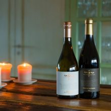 Víno a 10 mýtov, ktoré sa s ním spája