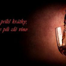 """"""" Víno je odpoveď zeme na slnko."""" – výroky o víne"""