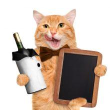 Zaujímavosti o víne, ktoré vás možno prekvapia a pobavia